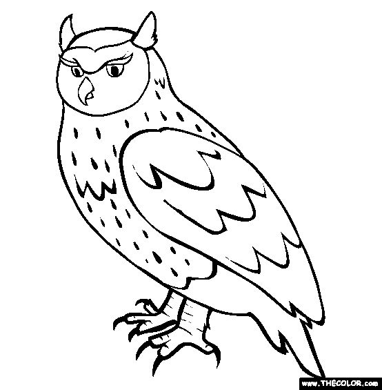owl coloring page free owl online coloring