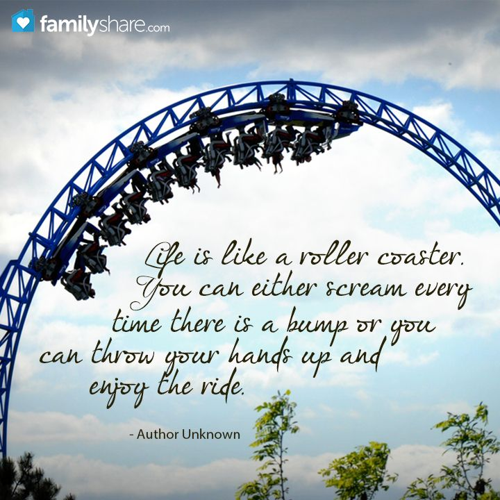 Life is like a roller coaster... Roller coaster, Life