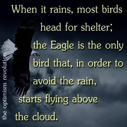 Soar higherClouds, The Lord, Inspiration, Amazing Quotes, The Eagles, Funny Families, Rise Above, Birds, Rain