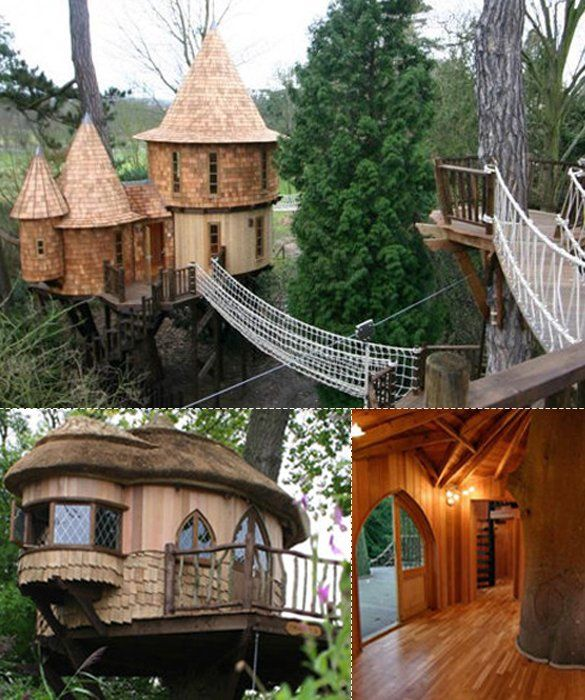 35 best images about cool tree houses on pinterest for Single tree treehouse ideas