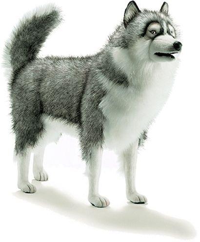 hansa husky dog gray life size 46 l animals plush and gray. Black Bedroom Furniture Sets. Home Design Ideas