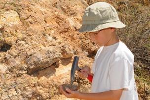 Fossil Hunter's Adventure