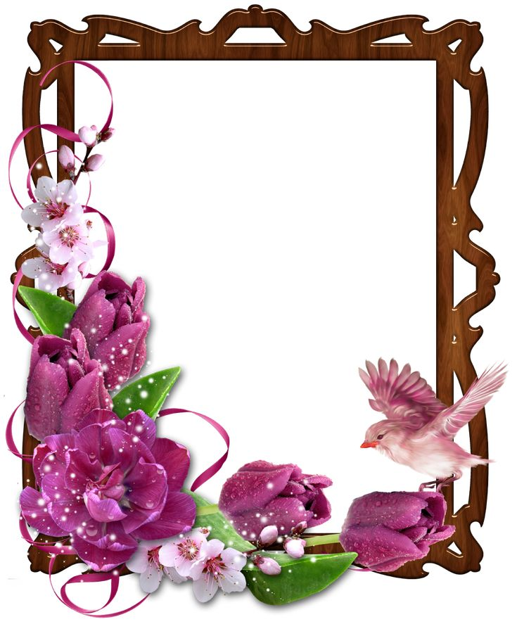 Wedding And Certificate Floral Border Border Clipart: Floral-Border-Wooden-Photo-Frame-with-Bird-and-Flowers