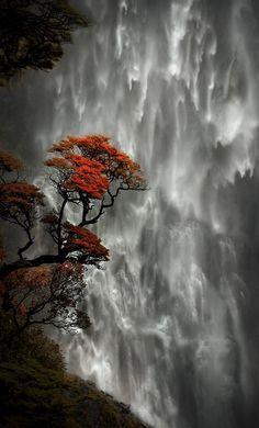 Cachoeira Punchbowl do Diabo, Parque Nacional da Passagem de Arthur, Canterbury (Ilha do Sul), Nova Zelândia.