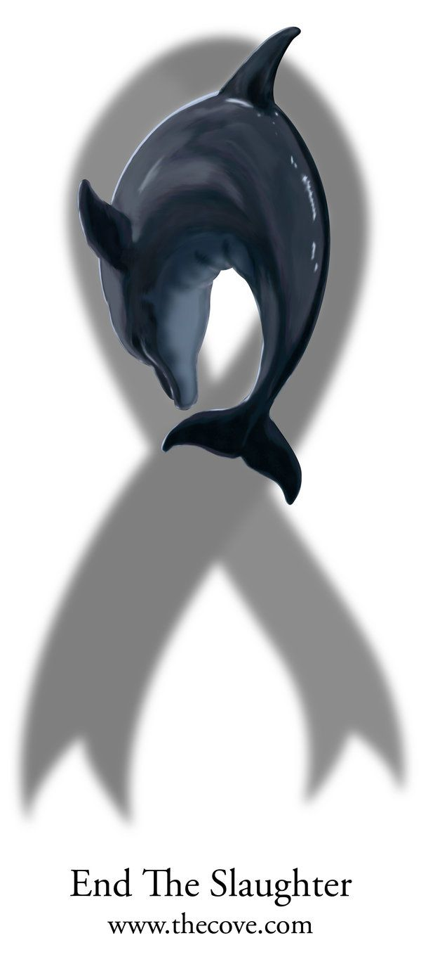 Resultado de imagen para international day of awareness for the dolphins of taiji.