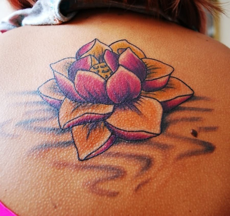 A lotus to represent a new beginning, or going through a