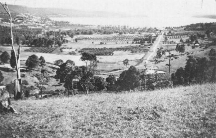 View of Warners Bay from Munibung Hill, 1930s