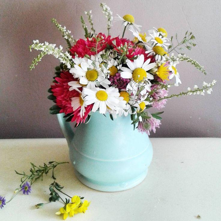 Dzień dobry Wszystkim.Dziś zamiast kawy na powitanie września bukiecik z kwiatów łąkowych i moich astrów balkonowych.Wręczony wczoraj Tosi na spóźnione urodzinki...#witamserdecznie #wrzesień #wrzesieńtopięknymiesiącbędzie #miłegoczwartku #bukiet #kwiatypolne #witajszkoło #здравствуйте #вшколу #сентябрь #букетик #goodmorning #september #bouquet #wildflowers #happyday