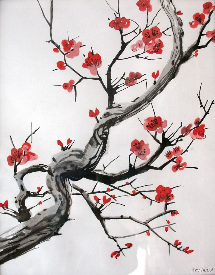 187 best cherry blossoms images on pinterest beautiful for Cherry blossom mural works