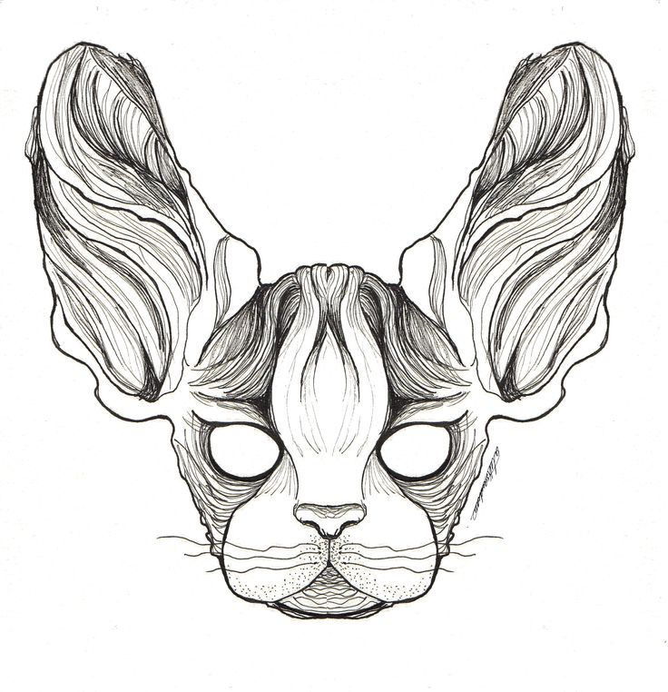 Symmetrical Sphynx by @alejandravvss   #sphynx #ink #aleksandrav #cat #symmetrical #gato