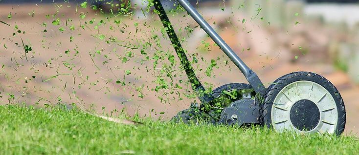 How to keep lawn edges neat http://blog.primrose.co.uk/2016/01/18/how-to-keep-lawn-edges-neat/?source=pinterest