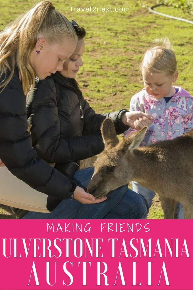 Making friends – Ulverstone Tasmania. Tasmania's Tarkine Forest Drive is a newly sealed road that has opened up Tasmania's North West to travellers.