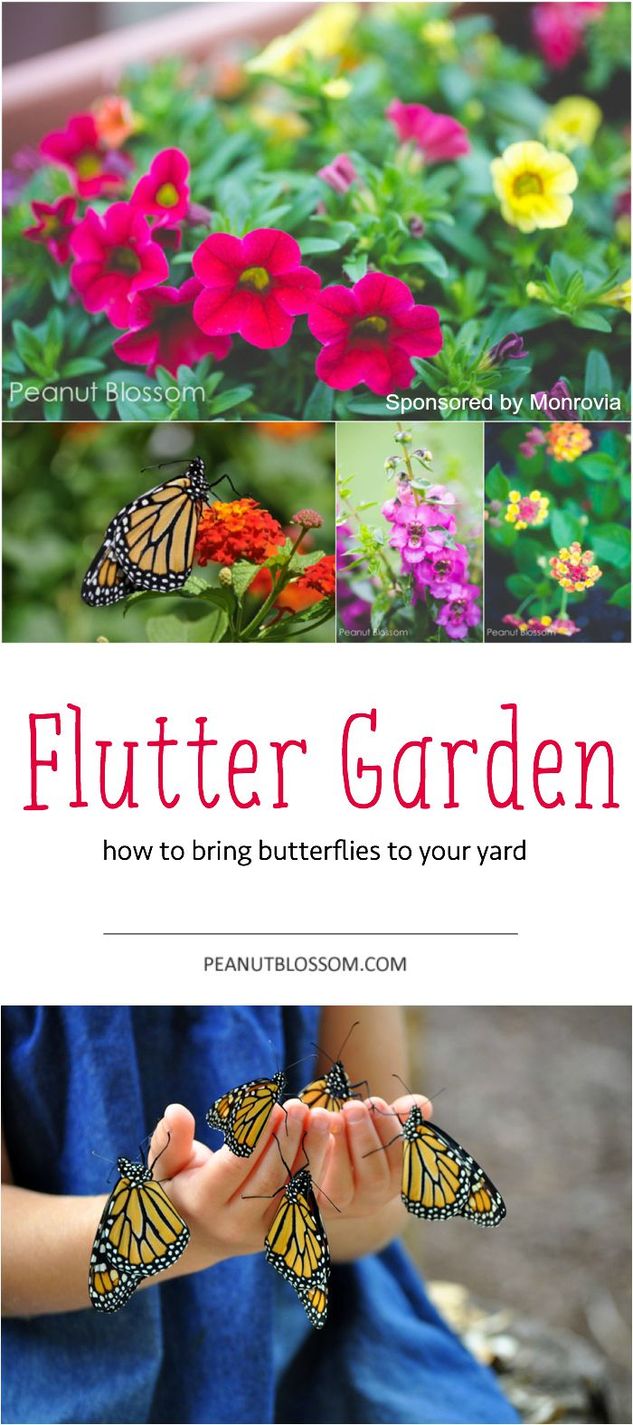 The perfect summer project to do with your kids: Plant a butterfly garden! Love this list of all the supplies and plants you need to attract them to your yard. My kids are going to flip!