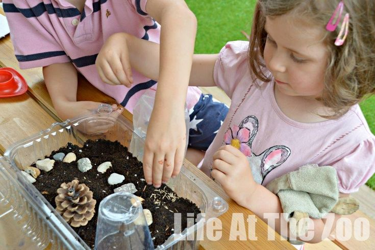 17 best images about lifetime love of learning on for Indoor gardening lesson