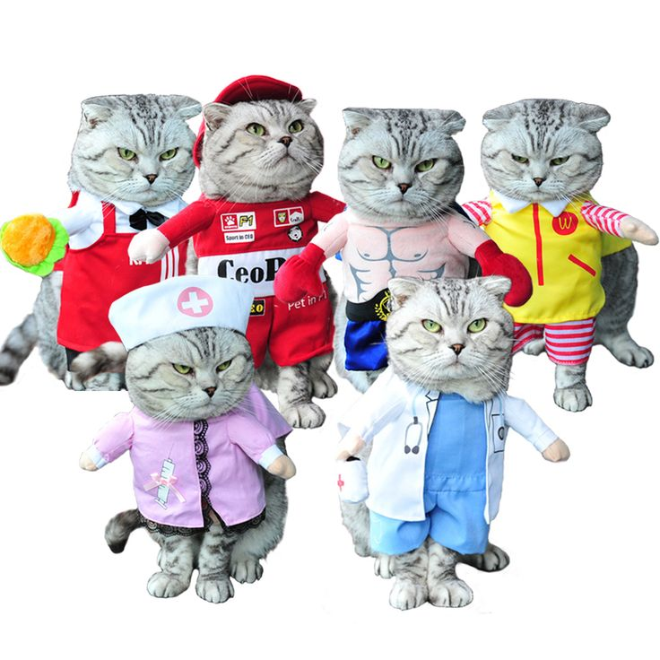 New Arrival Dogs Clothes Lovely Doctor Nurse Profession Cosplay Pet Costume Dog Clothing For Cat Puppy Fancy Dress Jacket Coat