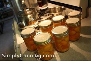 Canning apricots. SimplyCannning.com.  Simple step by step directions for a waterbath processing.