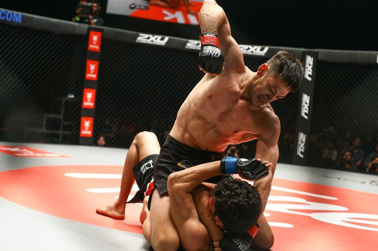 Lightweight bout: Peter Davis defeats Rajinder Singh Meena by TKO (Strikes) at 2:41 minutes of round 1