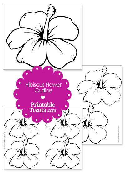 Printable Hibiscus Flower Outline from PrintableTreats.com