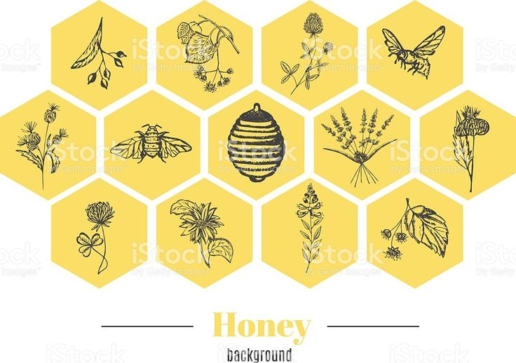 Honey background royalty-free stock vector art