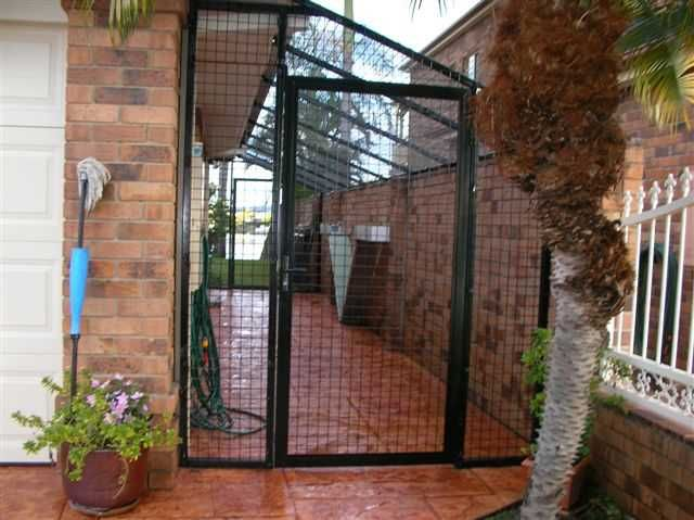 covered cat run | cat run is made from 50mm x 50mm mesh and can easily be covered ...