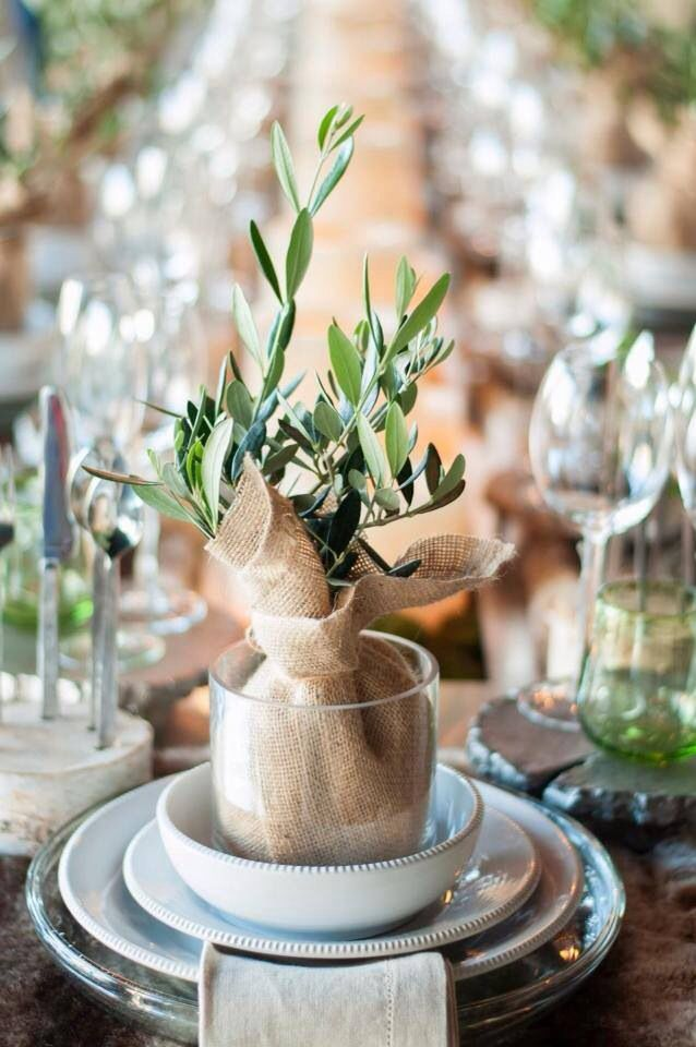 Olive tree sapling favours for Mediterranean style weddings