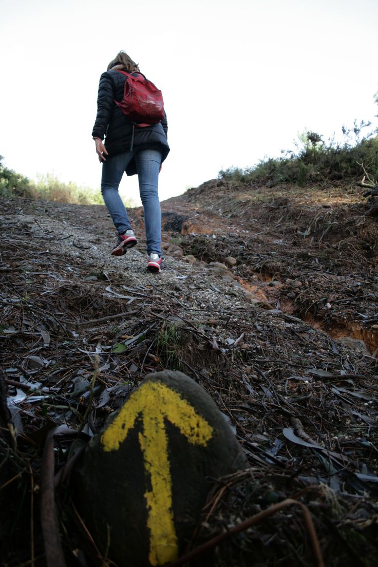 The Camino is a great way to enjoy some of the simplest pleasures in life, such as walking.