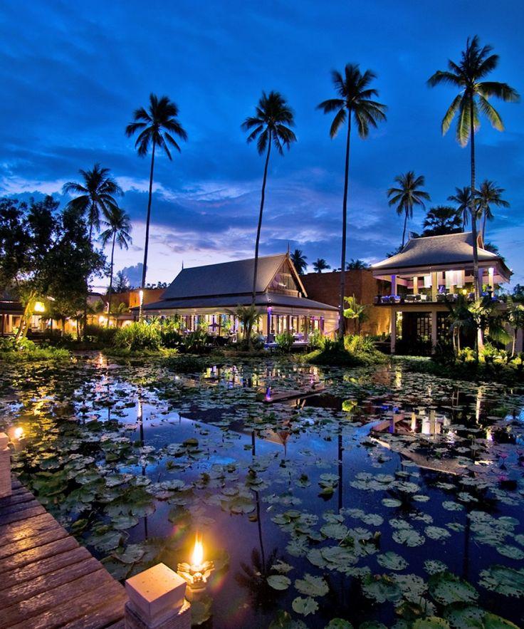 serenity... Phuket, Thailand