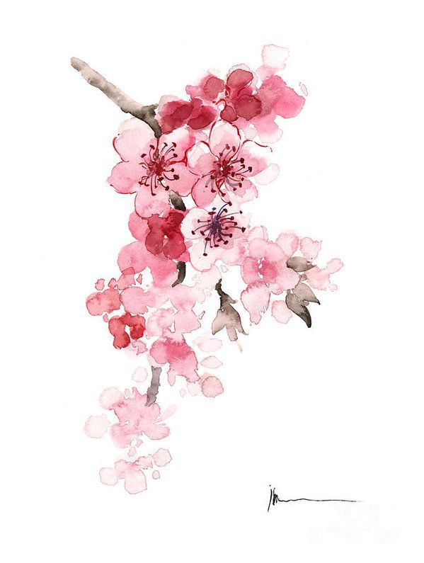 Sakura Print featuring the painting Sakura Flowers Watercolor Art Print Painting by Joanna Szmerdt