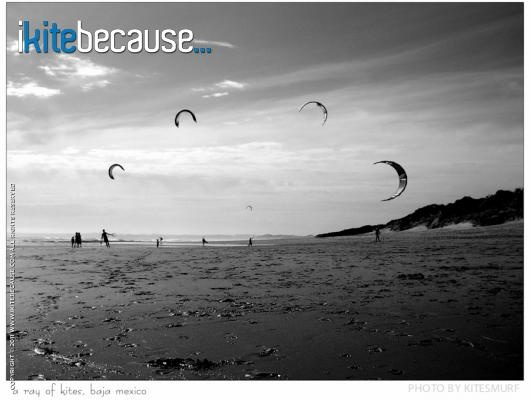 ikitebecause... I got hooked!  |  'A ray of kites' by Rob Kalmbach  |   http://www.ikitebecause.com/user/wavehucker