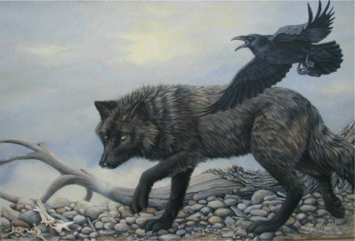 wolf and crow relationship problems