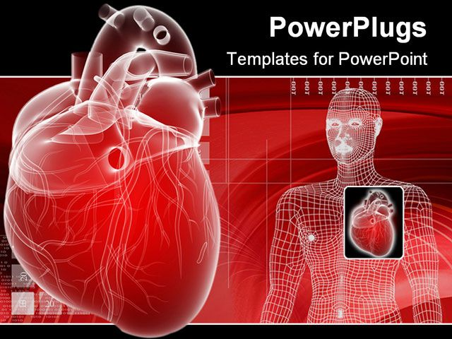 PowerPoint Template Displaying 3D Heart Depiction and Digital Human Body…