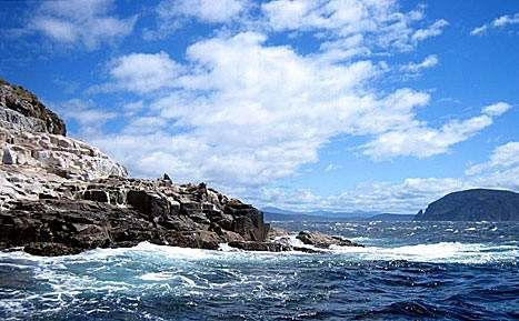 'Bruny Island Charters' by Prince Roy. CC BY 2.0