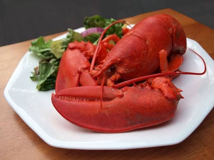 How To Reheat Lobster The Best Ways To Enjoy It While Hot Lobster Recipes Lobster Dishes Meals