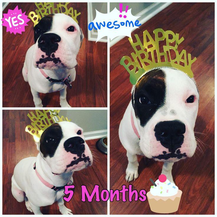 My birthday!! ❤️