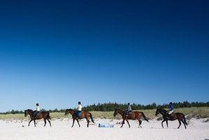 Horse riding trails along the Baltic Sea coast
