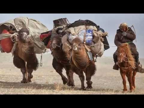 Timothy Allen............ Mongolia