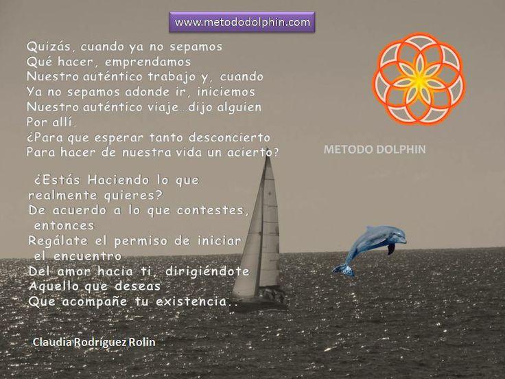www.metododolphin.com