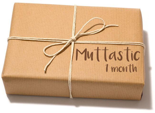 Four Paws & Me Subscription Box: Muttastic