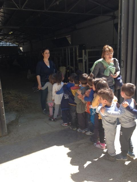 visiting stables
