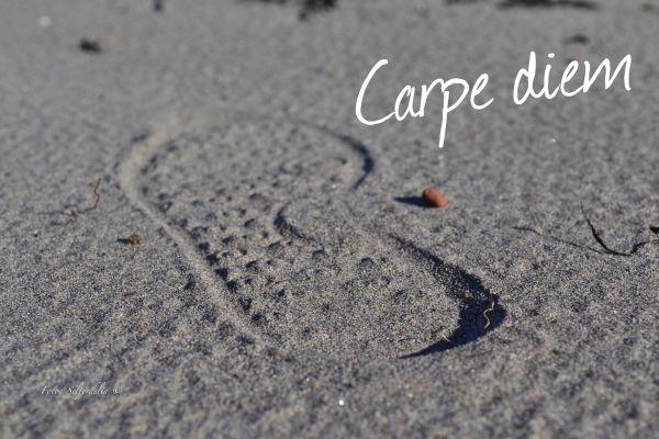Carpe Diem (Foto Seljordslia)