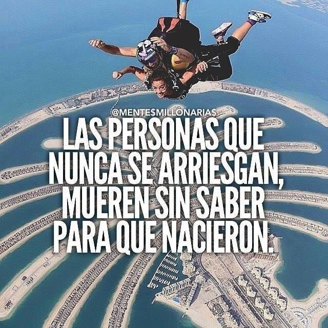 Best Motivational Quotes For Students: 120 Best Frases Mentes Millonarias Images On Pinterest