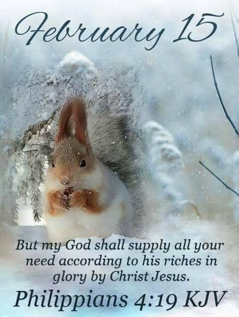 *12417* February 15~~J~ Philippians 4:19 KJV | Daily