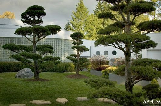 Asian Garden, one of alternative garden design, that can be inspiring for all people.