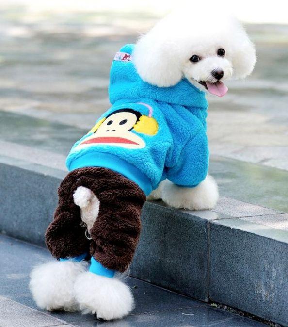 Beautiful clothes for dogs of different breeds | Красивая одежда для собак разных пород