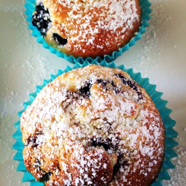 Donna hay blueberry muffins