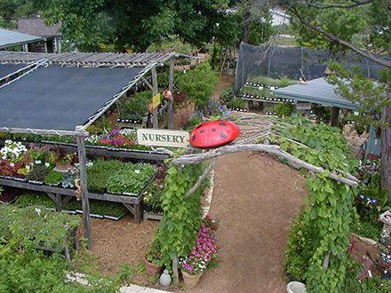 30 best The Natural Gardener images on Pinterest | Organic gardening ...