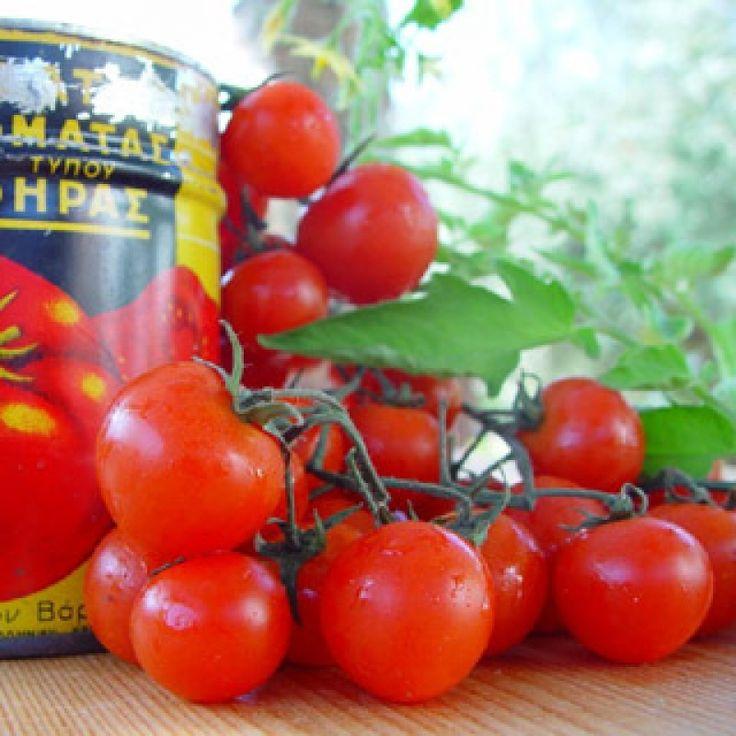Fried Tomato Balls (Tomato Rissoles) - gourmed.com