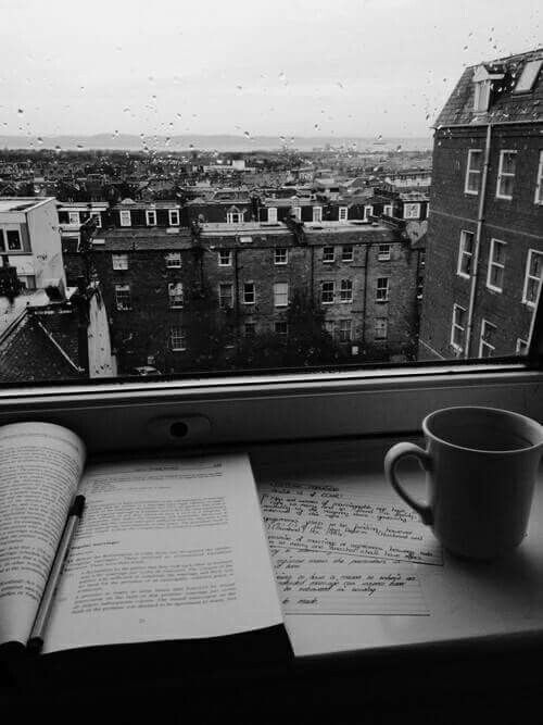 Rain, book, coffee, and a view. It can't get any better.