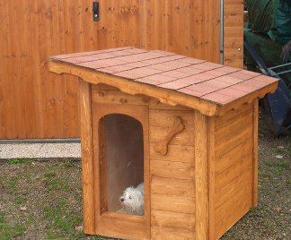 Costruire casette per cani fai da te