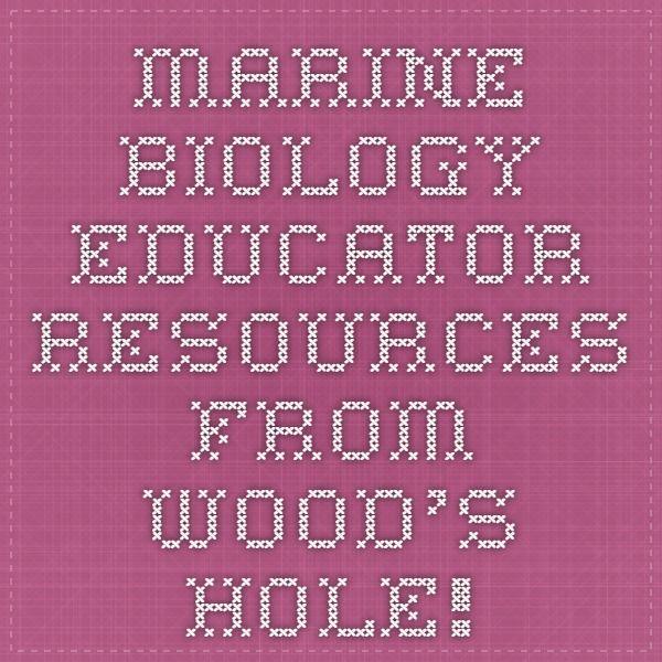 326 best Marine Biologist in Study~ Marine Conservation Biology - marine biologist job description